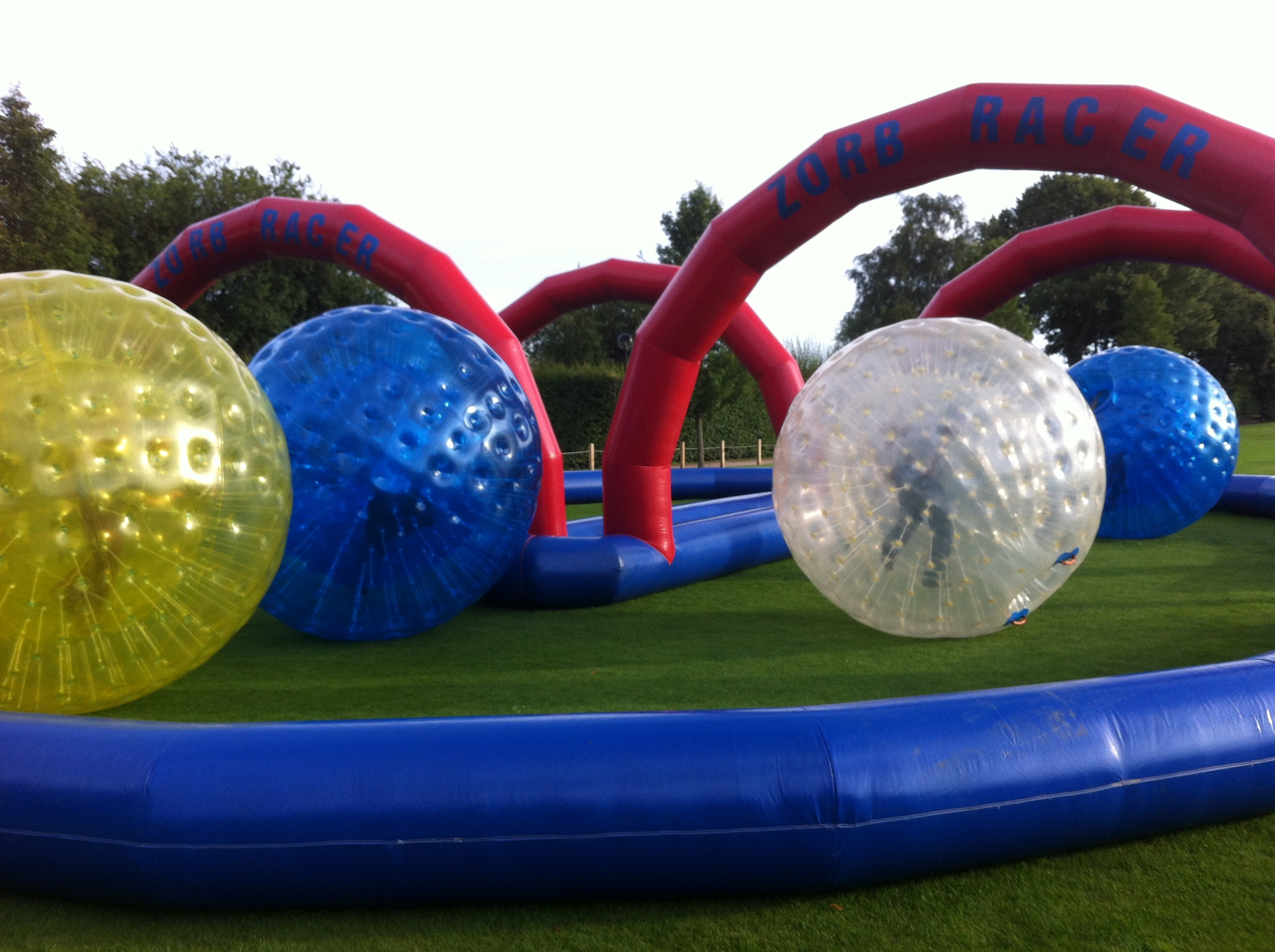 Zorb Business Package