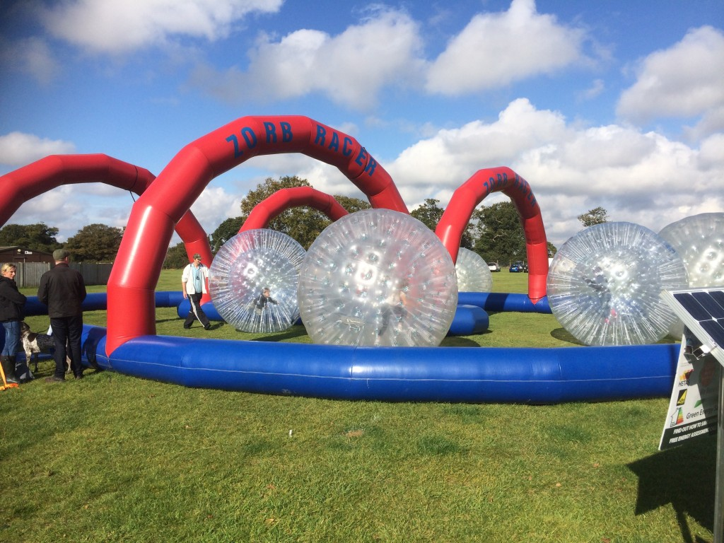 Zorb Racing Course